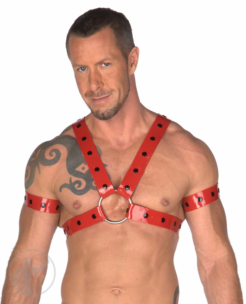 Rubber Studded Upper Body Harness